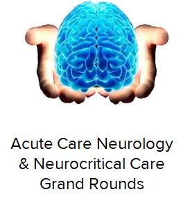 2020 Grand Rounds: Acute Neurology and NeuroCritical Care Banner