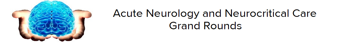 2020 Grand Rounds: Acute Neurology and NeuroCritical Care - Detection of Brain Activation in Unresponsive Patients with Acute Brain Injury Banner