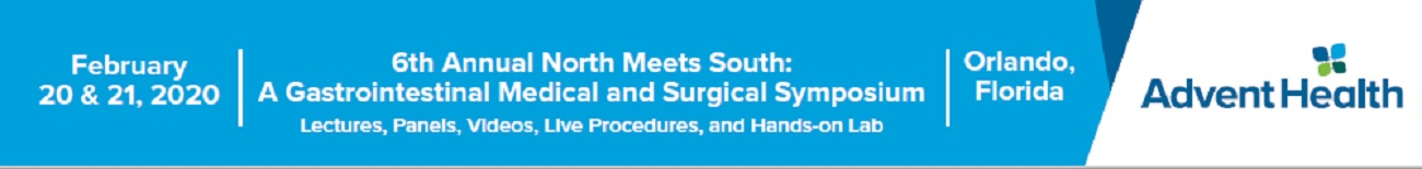 6th Annual North Meets South: A Gastrointestinal Medical and Surgical Symposium 2020 Banner